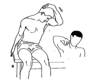 neck pain, headaches, chiropractor, chiropractic
